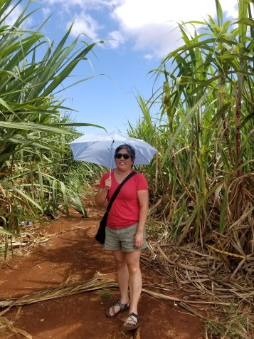 me in the cane fields